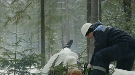 kettingzaag : Worker sawing with chainsaw in winter forest