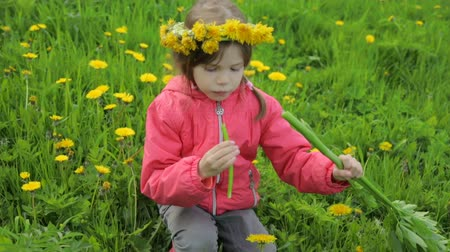zeller : Little girl on dandelion meadow eating celery
