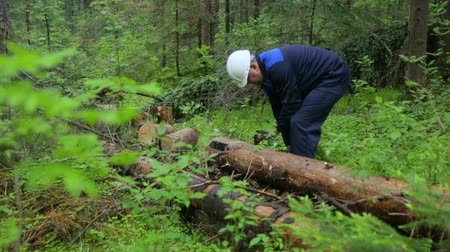 kettingzaag : Man with chainsaw working in forest Stockvideo