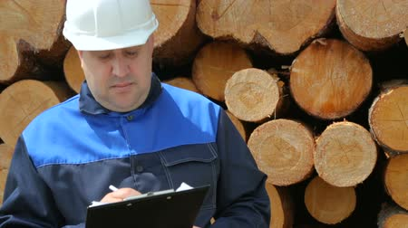 register : Worker with pad against pile of logs Stock Footage