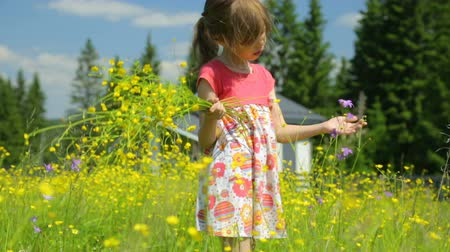 polního : Little girl with yellow flowers on meadow