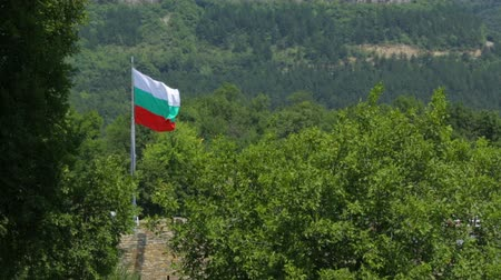 ветреный : Bulgarian flag waving in the wind Стоковые видеозаписи