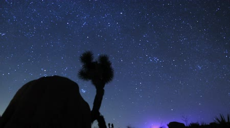 čas : StarsGalaxy Time lapse over Joshua Tree
