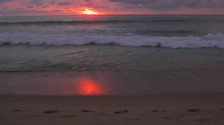 Sunset on the beach Stock Footage