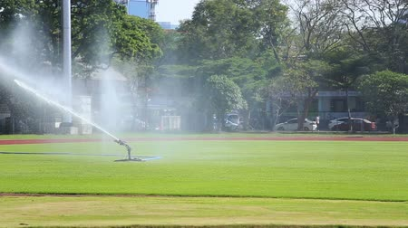 distribuidor : Sprinklers spraying water on grass in football field