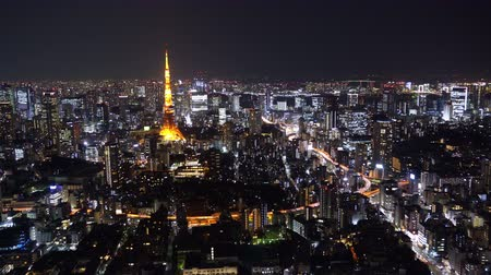 подопечный : Aerial view of Tokyo city at night, Japan
