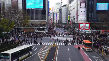 shibuya : TOKYO , JAPAN - March 25, 2019: crowds of people walking across at Shibuya famous crossing street in Tokyo, Japan
