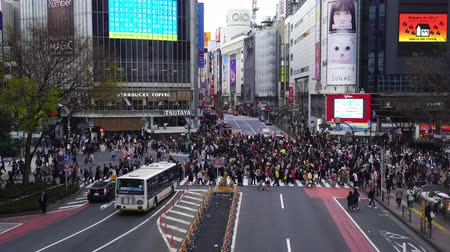 zebras : TOKYO , JAPAN - March 25, 2019: crowds of people walking across at Shibuya famous crossing street in Tokyo, Japan
