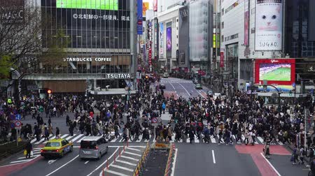 shibuya : TOKYO, JAPAN - March 25, 2019: crowds of people walking across at Shibuya famous crossing street in Tokyo, Japan Stock Footage