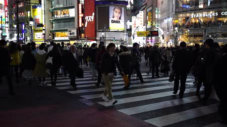 keresztül : TOKYO, JAPAN - March 25, 2019: slow-motion of people walking across at Shibuya famous crossing street in Tokyo at night, Japan Stock mozgókép