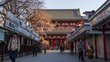 пагода : TOKYO, JAPAN - March 27, 2019: time lapse of spring cherry blossoms at Sensoji Temples Hozomon Gate with unidentified tourist, Tokyo, Japan