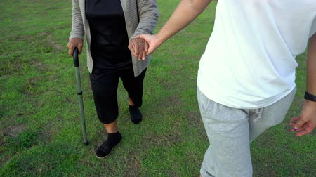 wandelstok : slow-motion of woman hold hands of elderly woman and walking in the park Stockvideo