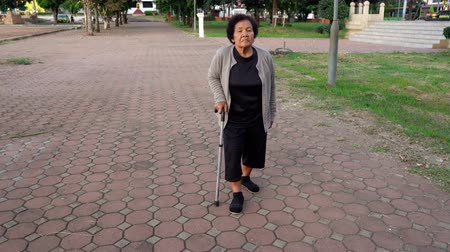 тростник : senior woman walking with walking stick in the park Стоковые видеозаписи