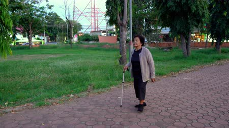 bengala : senior woman walking with walking stick in the park Stock Footage