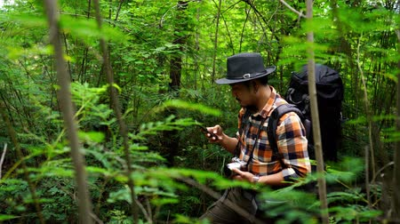 photograph : man traveler with backpack using smartphone to taking a selfie in the natural forest Stock Footage