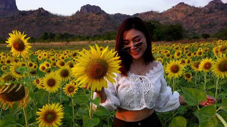 sunflower : slow-motion of cheerful woman walking and enjoying with sunflower field at Khao Jeen Lae in Lopburi, Thailand