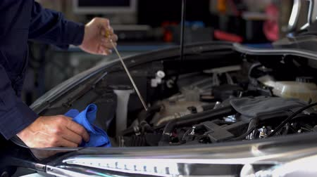 hand of technician checking the oil level on dipstick in a car engine