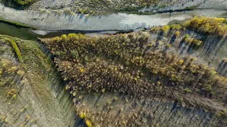 caucasian forest and river, top view, aerial shot Stock Footage