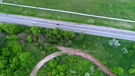Cars moving along the highway among green fields, some lonely trees, slow motion, aerial