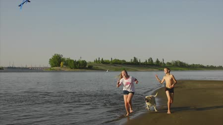 коршун : Happy and carefree childhood. Children play with a dog, run along the sand, laugh, play on the river, launch a toy airplane. Стоковые видеозаписи