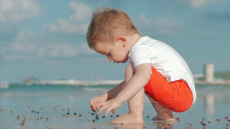 curtimento : Cute Little Child Plays Near the Sea, Kid Catches, Considers Live Sea Shells, Crabs, On a Tropical Beach Against the Blue Ocean. Concept: Children, Happy Childhood, Summer, Child, Vacation. Soft focus Stock Footage