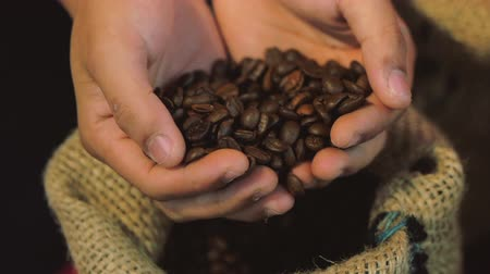 borrifar : Coffee Beans. Womens Hands Touch are Gaining Coffee Beans From a Bag of Coffee. The Quality of Roasted Coffee Beans in Summer. Stock Footage