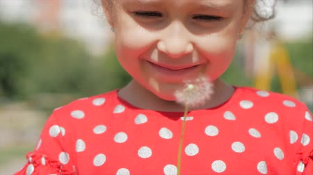 alergia : Slow Motion Close-Up Shot of Cute Little Girl Carefree Blowing a Dandelion Outdoors on a Sunset. Concept of Happy Carefree Childhood. 5 in 1
