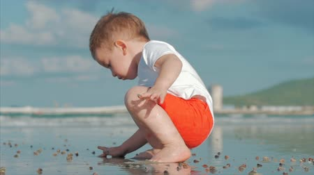 Cute Little Child Plays Near the Sea, Kid Catches, Considers Live Sea Shells, Crabs, On a Tropical Beach Against the Blue Ocean. Concept: Children, Happy Childhood, Summer, Child, Vacation. Soft focus Wideo