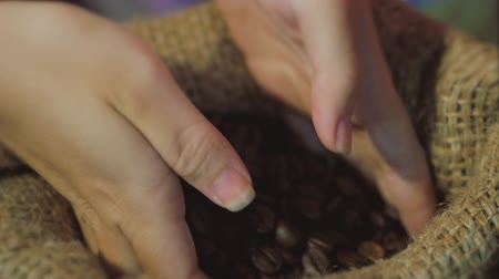 Coffee Beans. Womens Hands Touch are Gaining Coffee Beans From a Bag of Coffee. The Quality of Roasted Coffee Beans in Summer. Wideo