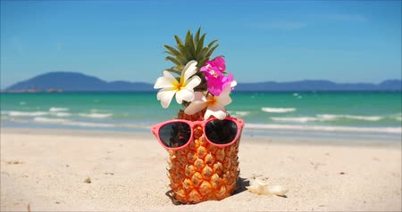 On a Tropical Beach Close-Up of Fruit in Sunglasses Under the Hot Summer Sun Along the Tropical Exotic Coast, Pineapple in Sunglasses on the Ocean Background. Concept Topical, Summer, Party, Holiday. Wideo
