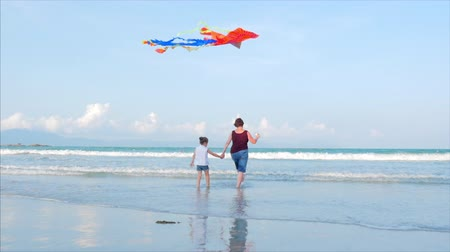 Happy grandmother with child the playing flying kite. Soft Focus. Concept Happy and carefree childhood.