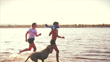 Happy and Carefree Childhood. Children Play with a Dog, Run Along the Sand, Laugh, Play on the River, launch a Toy Airplane. Wideo