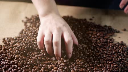 Coffee beans. Hands scattered coffee beans. Womens hands touch coffee beans. Quality of grain roasted in coffee fly. 4k.