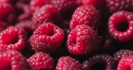 мята : Close Up Berry. Fresh, Juicy Raspberry Background, Ripe. Macro Red Raspberries Fruit. Fresh Raspberry Fruits As Food Dackground. Healthy Food Organic Nutrition.