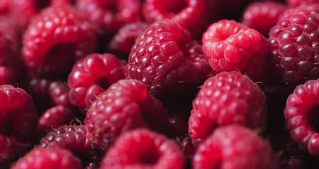 Close Up Berry. Lampone Fresco, Succoso Sfondo, Maturo. Macro Frutta Lamponi Rossi. Frutti Di Lampone Freschi Come Food Dackground. Alimentazione sana dell'alimento biologico.