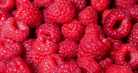 кусты : Close Up Rotation Loopable Raspberry. Fresh, Juicy Raspberry Background, Ripe. Macro Red Raspberries Fruit. Fresh Raspberry Fruits As Food Dackground. Healthy Food Organic Nutrition.