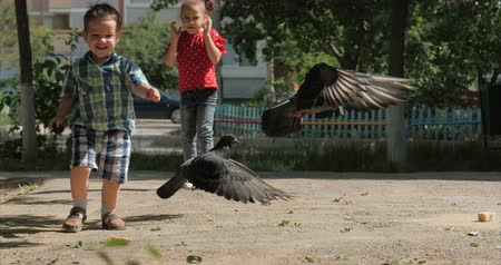 оригами : Happy child runs after birds, pigeons fly in the background running to him a little boy into the air. Concept of a happy family. Childhood freedom.