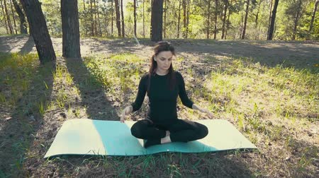 гибкий : young pregnant woman doing yoga outside.