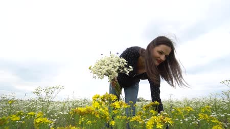 camomile : Pregnant woman picking camomile flowers. Stock Footage