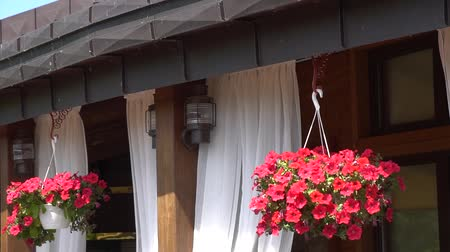 opona : Facade of a restaurant. Balcony of beautiful home. Flowers on the balcony. Dostupné videozáznamy