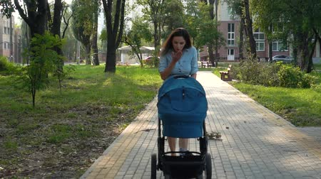 Mother walking with a pram in the park. Summer nature background. Stedycam.
