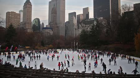 skate : Skating in Central Park - New York