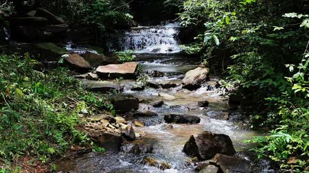 수경 : Tropical Waterfall
