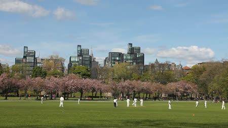 match : People playing a cricket match in the Meadows Park in Edinburgh, Scotland