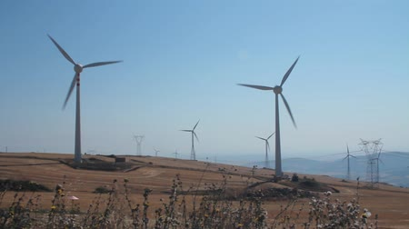 moinho de vento : Panoramic of a field of wind turbines in function on a windy day