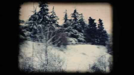 eight : Vintage 8mm. Original footage digitalized. Snowy neighbourhood with trees Stock Footage