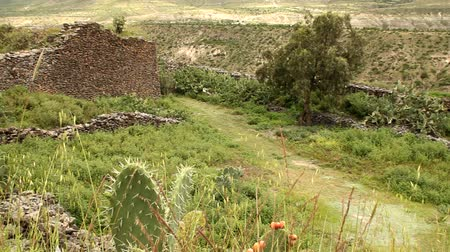 ruiny : Ancient walls built by indigenous Wari people, a Middle Horizon civilization that flourished in the south-central Andes and coastal area of modern-day Peru, from about CE 500 to 1000.