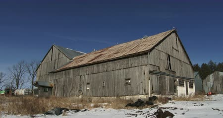 ahır : Old barn in organic farm in winter in Canada Stok Video