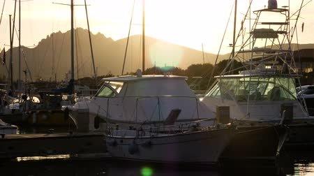 richness : Backlit view of the harbor of Porto Rotondo, Italy Stock Footage