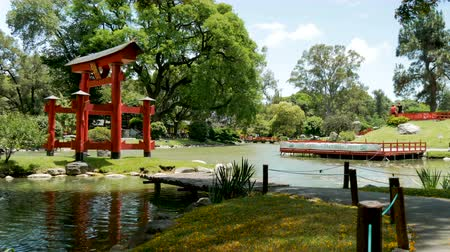 Japanese Garden (Jardn Japons) in Buenos Aires, capital of Argentina. Стоковые видеозаписи